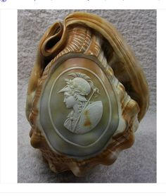 Cameo Carved From Conch Shell