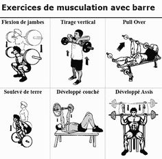 exercices musculation avec barre