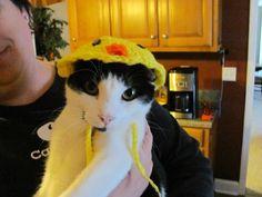 Crochet Yellow Easter Chic Pet Hat for a Dog or Cat, Handmade   DefiantCreations - Pets on ArtFire