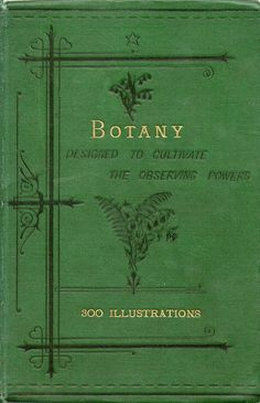 Botany : Designed to Cultivate the Observing Powers 1888