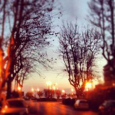 My Rimini