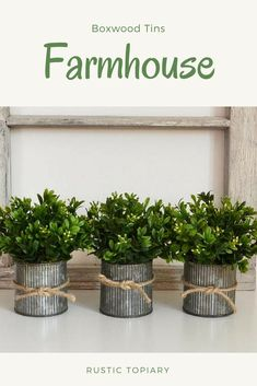 Three Pots of Faux Boxwood in Jute-tied, Galvanized Tins; Dining Room Centerpiece, Greenery Centerpiece, Farmhouse Kitchen Decor, Rustic Farmhouse, Industrial Farmhouse, Kitchen Redo, Farmhouse Style, Galvanized Decor, Boxwood Topiary