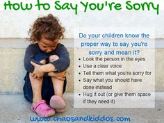 How to Say You're Sorry - Chaos & Kiddos
