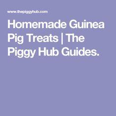 Homemade Guinea Pig Treats   The Piggy Hub Guides.