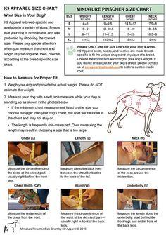 MINIATURE PINSCHER Tummy Warmer Dog Coat Dog by VoyagersK9Apparel
