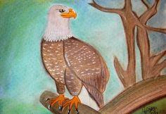 """""""Águia"""" Pintura a Pastel Seco e Lápis de Cor A3"""