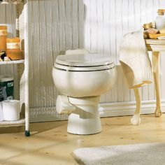 envirolet composting toilet (looks just like a regular toilet, YAY!  this one is low water remote, but they also have waterless, vacuum flush, and self-contained)