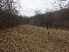 Veľký pozemok v obci Vrbovce s plochou 6229