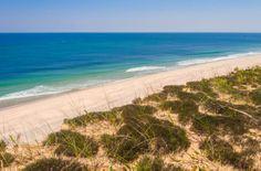 Beach in Cape Cod, Photo Roberto Portolese