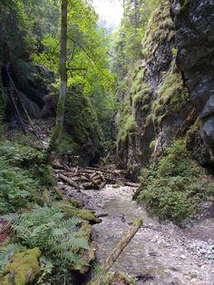 Kyseľ canyon Slovak Paradise National Park Slovakia #hiking #camping #outdoors #nature #travel #backpacking #adventure #marmot #outdoor #mountains #photography