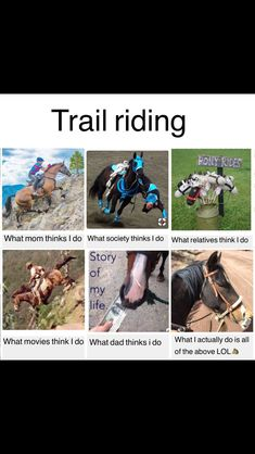 Trail riding - Horses Funny - Funny Horse Meme - - Find very good Jokes Memes and Quotes on our site. Keep calm and have fun. Funny Pictures Videos Jokes & new flash games every day. The post Trail riding appeared first on Gag Dad. Funny Horse Memes, Funny Horse Pictures, Funny Horses, Cute Horses, Funny Animal Memes, Cute Funny Animals, Horse Love, Beautiful Horses, Horse Humor