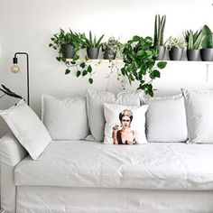 Tamara (@my_green_home_and_me) • Instagram-Fotos und -Videos Couch, Instagram, Videos, Green, Furniture, Home Decor, Photos, Settee, Decoration Home
