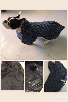 From an old umbrella to a puppy raincoat