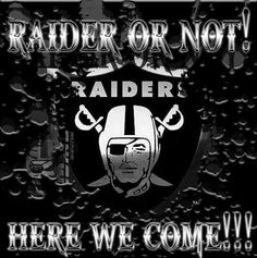 Raiders for life                                                                                                                                                                                 More