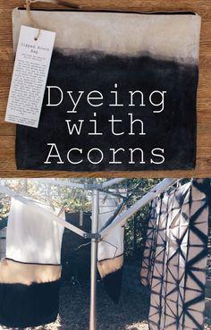 DIY Natural Acorn Dye | Creative DIYs