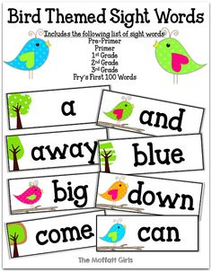 Bird themed sight word word wall!  EDITABLE cards so you can add your own sight words!