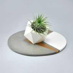 White concrete planters.