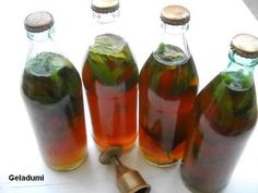 Sirop natural de menta verde - Retete in imagini - Culinar.ro Forum Deserts, Cottage, Sweets, Syrup, Canning, Cottages, Postres, Dessert, Cabin
