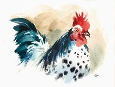 Rooster  Original Watercolor Bird Painting 9x12 by CMwatercolors