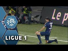 But Edinson CAVANI (60') / FC Lorient - Paris Saint-Germain (1-2) -  (FCL - PSG) / 2014-15