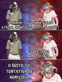Bode Gaiato