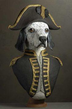 setter Amiral