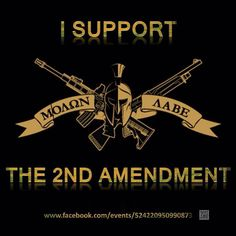 Molon Labe my friends, Molon Labe :) For this ethat love the Amendment. Pro Gun, By Any Means Necessary, Molon Labe, Gun Rights, Dont Tread On Me, 2nd Amendment, Guns And Ammo, We The People, Firearms