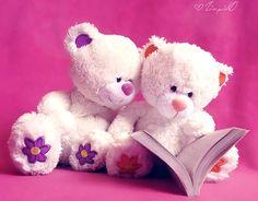 teddy bears ..........