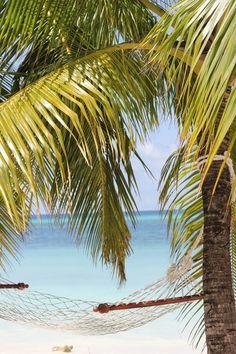 Reisebericht Malediven / Kuredu Island Resort - The inspiring life Kuredu Island, Island Resort, Strand, German, Instagram, Beach, Water, Travel, Life