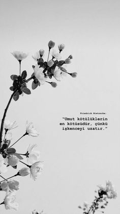 Umut kötülüklerin en kötüsüdür, çünkü işkenceyi uzatır.. 🐞 Sad Words, Deep Words, Cool Words, Instagram Blog, Instagram Story, Love Promise, Tumblr Photography, Galaxy Wallpaper, Friedrich Nietzsche