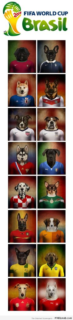 FIFA World Cup humor – a funny Football tribute   PMSLweb