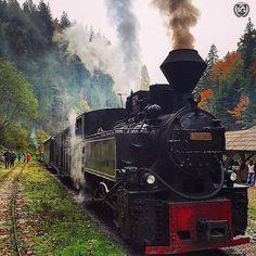 present  IG  S P E C I A L  M E N T I O N | P H O T O |  @yvy06  L O C A T I O N | Mocanita steam train Viseu de Sus  Maramures - Romania  __________________________________  F R O M | @ig_europa A D M I N | @emil_io @maraefrida @giuliano_abate F E A U T U R E D  T A G | #ig_europa #ig_europe  M A I L | igworldclub@gmail.com S O C I A L | Facebook  Twitter M E M B E R S | @igworldclub_officialaccount  C O U N T R Y  R E Q U I R E D | If you want to join us and open an igworldclub account of…