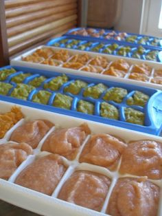 Homemade baby food--freeze in ice cube trays, pop about 6 of same kind  in a freezer bag and label with date & contents. Take out what you need and thaw.