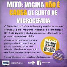 Ministério da Saúde - rubéola e microcefalia
