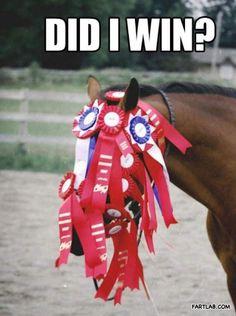 7) Door mee te doen aan competities, of het nu gaat om een race voor een Olympische medaille of voor een nominatie voor een Spin Award, heeft iedereen één doel voor ogen.