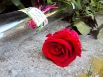 Coup de Coeur ArtiFleurs à petit prix : La Rose rouge Eternelle à offrir !!
