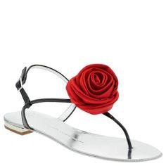 rose-zanotti