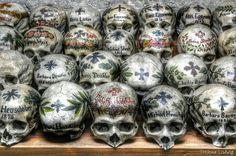 The skulls of the #Hallstatt #cemetry - #Austria