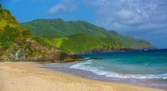 Renaissance St. Croix Carambola Beach Resort & Spa - Google Search