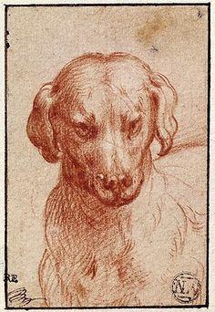 parmigianino drawings - Google Search