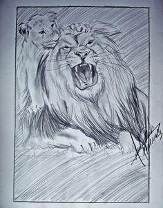 Leões - por Marcelo Dhosh www.dhosh.com