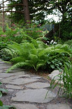 MARIAN KOTI JA PUUTARHA Garden Living, Home And Garden, Path Ideas, Beach Cottages, Shade Garden, Flower Beds, Garden Paths, Garden Projects, Garden Inspiration