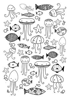 draw some undersea creatures
