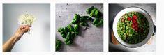 Koktajle owocowo-warzywne. Zdrowe przepisy na smoothie - towsrodku.pl Plants, Plant, Planets