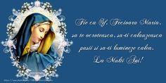 Fie ca Sf. Happy Birthday Fun, Birthday Cards, Santa Maria, Animal Paintings, Sf, Sisters, Facebook, Youtube, Bible