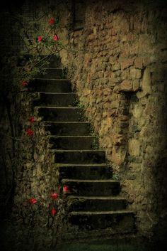 'Treppe ' von Elke Balzen bei artflakes.com als Poster oder Kunstdruck $18.03