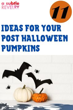 Here are the ideas for your post Halloween pumpkins! Over the years, we have found some fun ways to reuse the pumpkins and extend their lives a bit longer. Here are simple ideas for enjoying your pumpkins even after the trick or treating is done. Check this pin! #postpumpkin #halloweenpumpkin #pumpkinideas Halloween Pumpkins, Halloween Diy, Happy Halloween, Pumpkin Faces, Cute Pumpkin, Pumpkin Planter, Paper Pin, Hanging Garland, Small Pumpkins