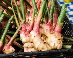 Sluta köp ingefära! Här är 5 enkla steg till hur du odlar ett oändligt förråd hemma