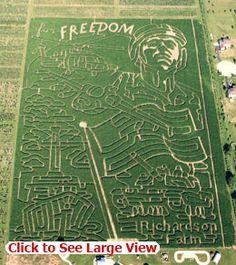 World's Largest Corn Maze at Richardson Adventure Farm Spring Grove, Illinois