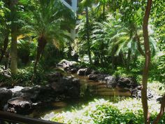 Mana Lani Atrium Garden | Flickr Atrium Garden, Garden Pond, Contemporary Building, Entrance, Architecture Design, Indoor, Sky, Explore, Modern
